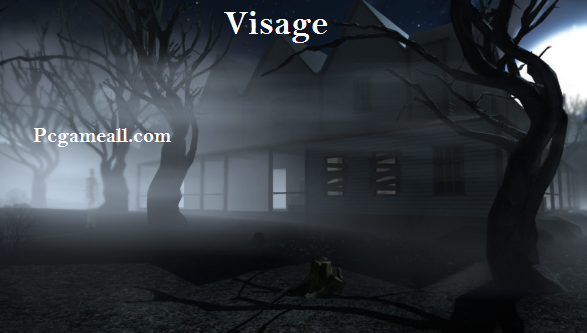 Visage Highly Compressed